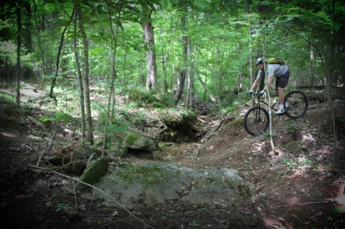 Person on Mountain Bike Riding the North Ford Street Mountain Bike Trail Park